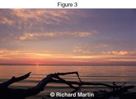 Richard Martin - DR photo