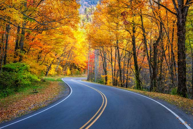 How to Take Perfect Fall Photos