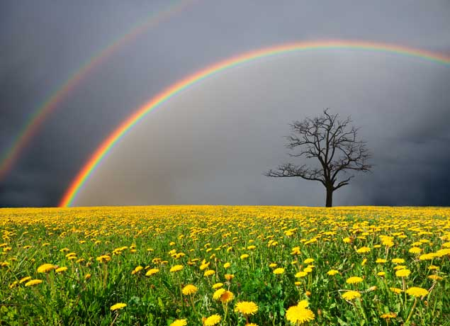 Make Your Rainbows Standout