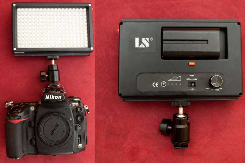 Using a Video Light to Enhance Your Nighttime Photography