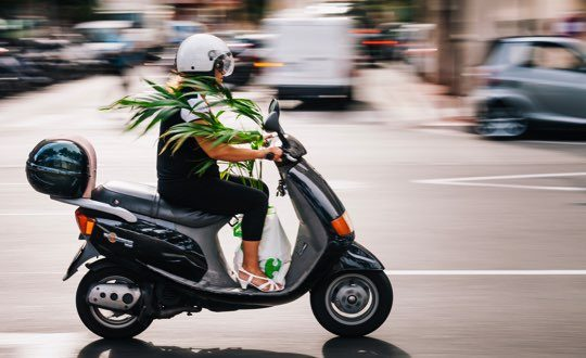 3 Tips for Perfect Panning