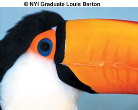 Student Profile Louis Barton 2