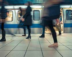 Where Do NYIP Graduates Work?